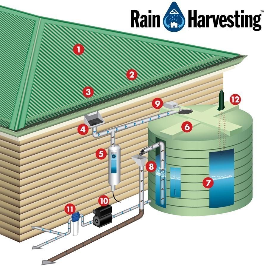 Faut-il récupérer l'eau de pluie ? Voici comment et pourquoi