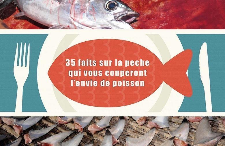 Les revues sur la pêche lire en ligne