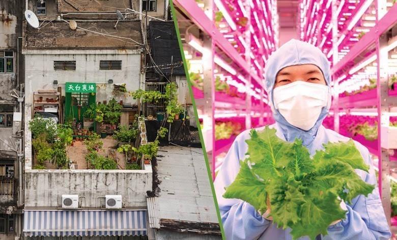 25 fermes urbaines qui démontrent que le futur est en marche