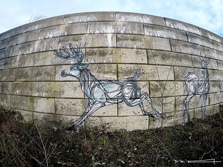 street-art-geometric-line-animals-dzia-belgium-3