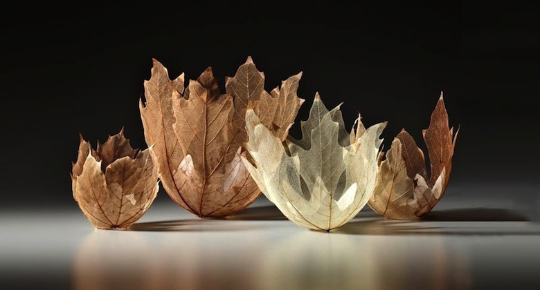 leaf-bowl-art-kai-sekimachi-9