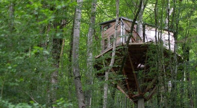 Les autorités françaises veulent détruire une cabane arboricole