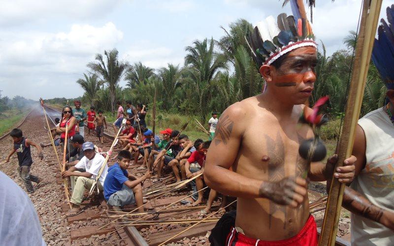 Un projet ferroviaire menace les peuples indigènes d'Amazonie