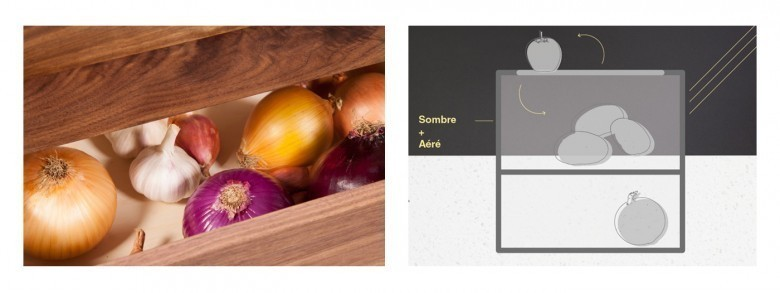 La conservation des fruits et légumes de façon naturel Onions-e1436598553722