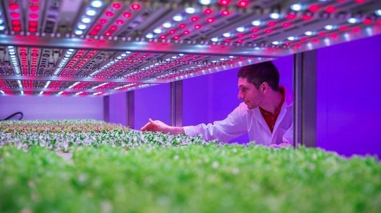 philips-growwise-city-farming-research-center@2x