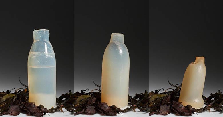 Islande : un étudiant crée une bouteille d�eau biodégradable