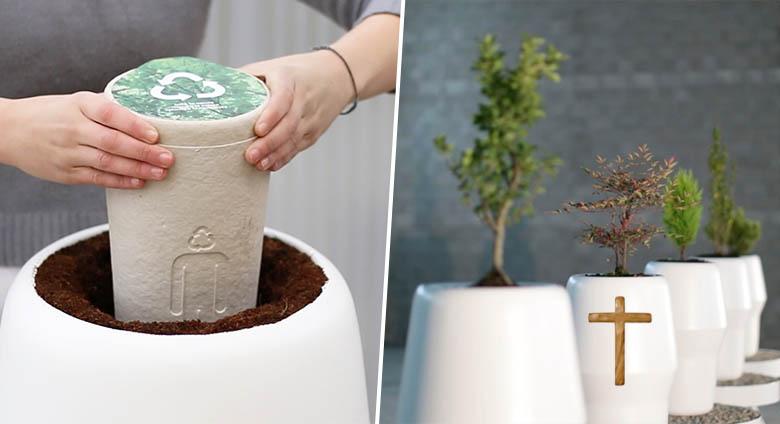 spiritualit et illusions cette urne biod gradable vous transforme en arbre apr s la vie. Black Bedroom Furniture Sets. Home Design Ideas