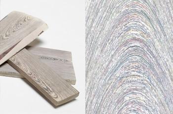Comment convertir du vieux papier… en bois !