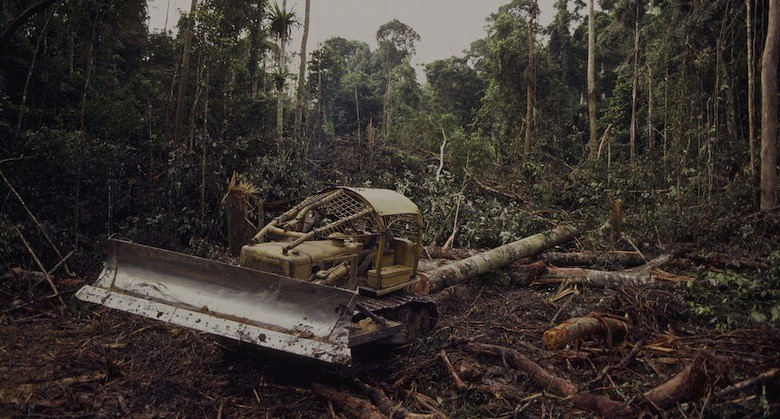 deforestation_congo