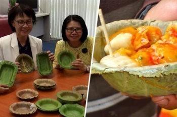 Une trouvaille thaïlandaise : les assiettes en feuilles d'arbre !