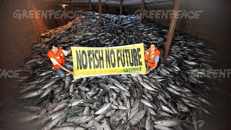 Fin mai, la France avait déjà vidé son stock annuel de poissons