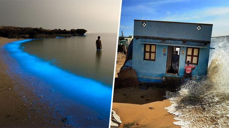 Les clichés spectaculaires du concours de photographie environnementale Aktins CIVEM