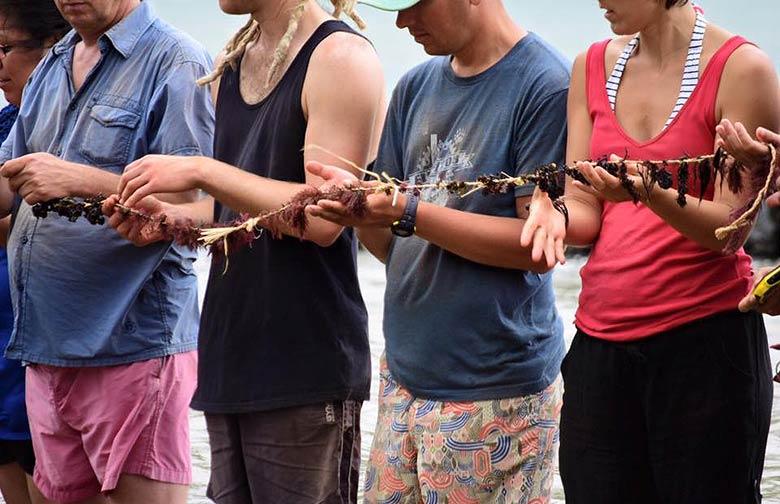 13_Hawaii_world_conservation