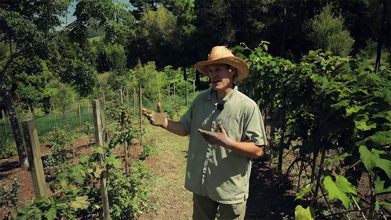 01_permaculture