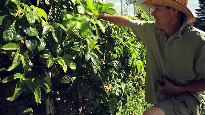 Cet homme a quitté la finance pour ouvrir une ferme en permaculture
