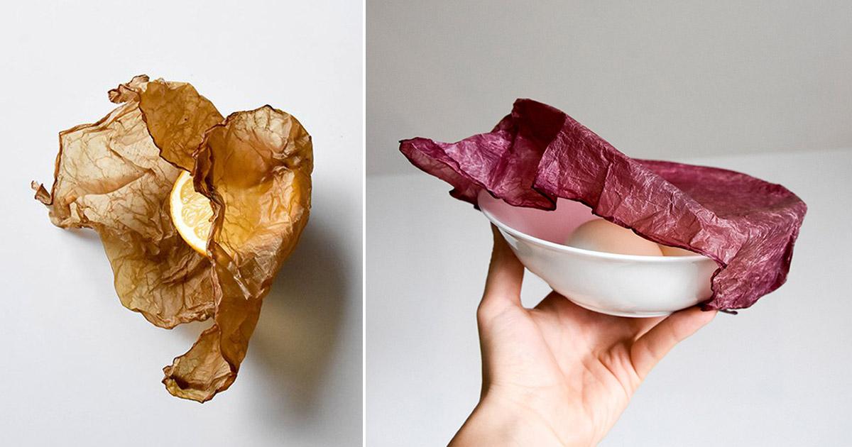 Manger nos emballages: l'idée de génie développée en Pologne @djzentao