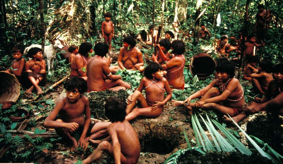 Colonialisme vert : quand des peuples autochtones sont expulsés au nom de l'écologie
